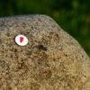 Rote Tüte Button Bautzen
