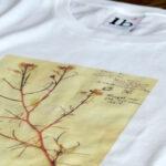 """T-Shirt """"Rosa   Senf"""""""